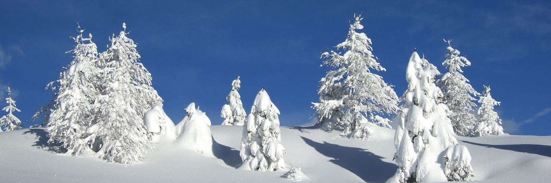 panorama-inverno